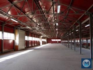 Spatiu industrial de inchiriat in Brazi, 1000 mp