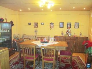 Vila cu 7 camere de vanzare, zona Ana Ipatescu, 167 mp