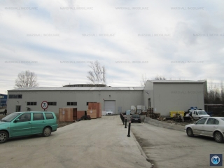 Spatiu industrial de vanzare, zona Exterior Vest, 1002 mp