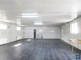 Spatiu industrial de inchiriat, zona Sud, 110 mp