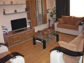 Apartament 2 camere de vanzare, zona Enachita Vacarescu