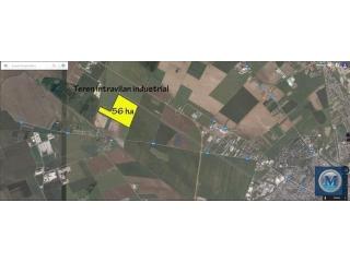 Teren intravilan de vanzare in Buda (Aricestii Rahtivani), 56 mp