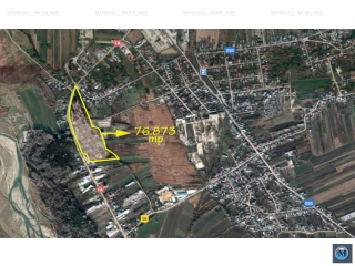 Teren intravilan de vanzare in Boldesti-Scaeni, zona Vest, 76873 mp