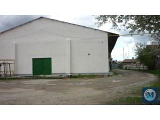 Spatiu industrial de vanzare in Filipestii de Padure, 983 mp