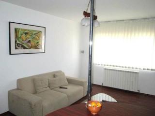 Apartament 2 camere de vanzare, zona Cantacuzino, 55 mp