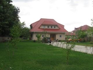 Vila cu 5 camere de vanzare in Odaile, 250 mp