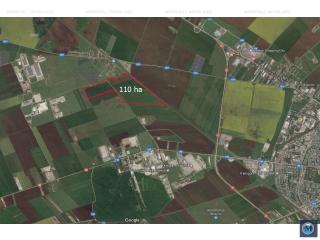 Teren intravilan de vanzare in Aricestii Rahtivani, 110000 mp